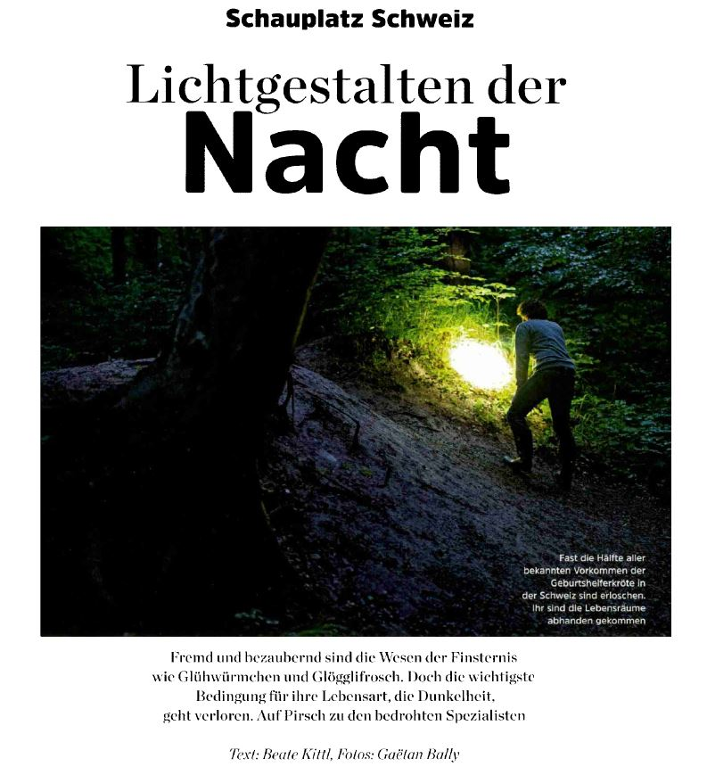 GEO Artikel Lichtgestalten der Nacht von Beate Kittl